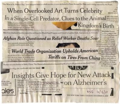 "(The Animal Kingdom's Birth) NYT 12-14-10 - 12-15-10   9 5-16X 8""  BACK"
