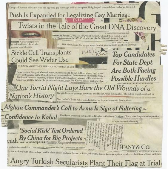 'SOCIAL RISK' TEST ORDERED NYT 11.13.12 BSC 11.18.12  back.jpg